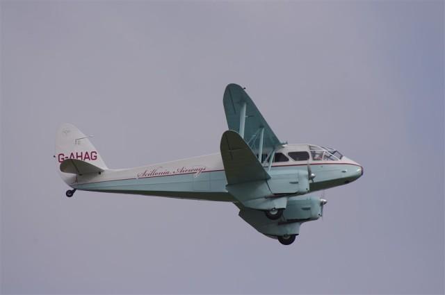 IMGP3604